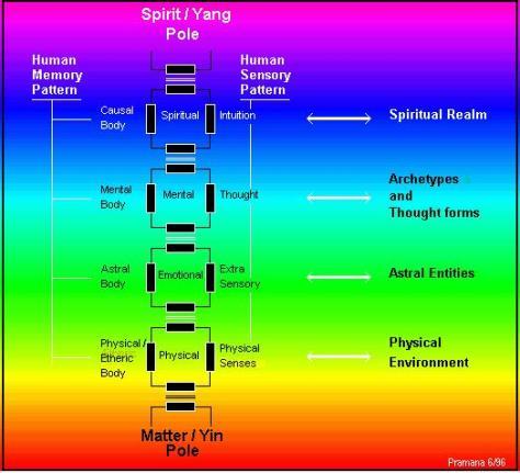 human-energy-circuit